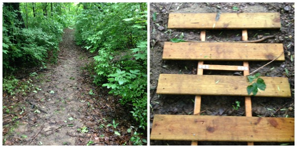 running trail ladder