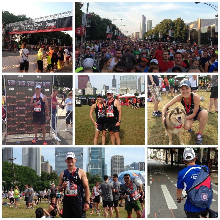 rock n roll half marathon chicago team paws