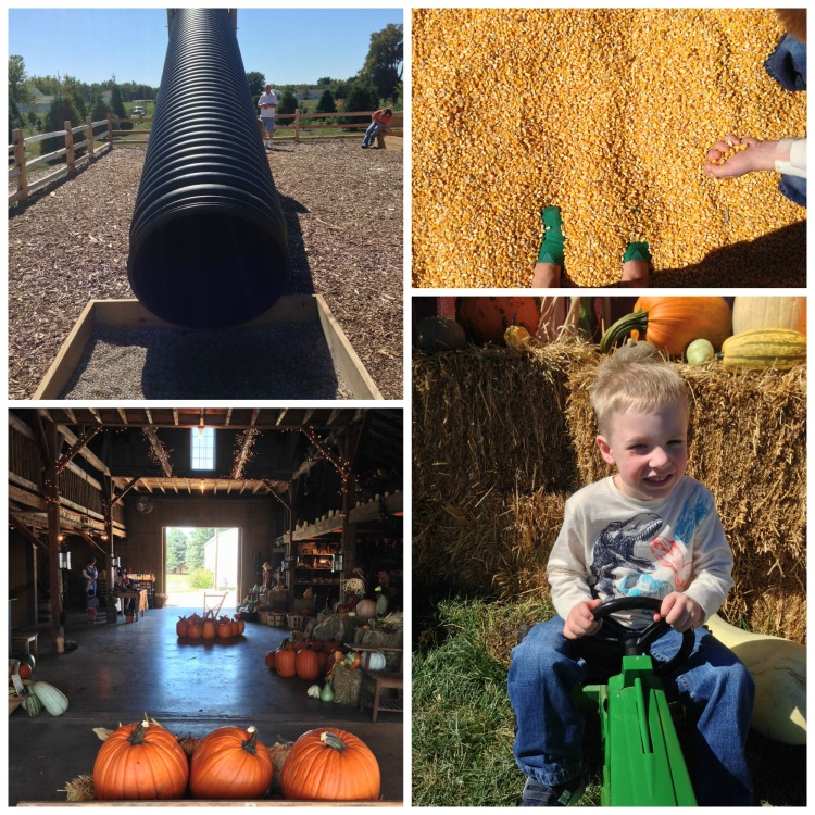 bomke's patch, pumpkin, wagons, tractors, barn, playground, corn crib, simply social blog