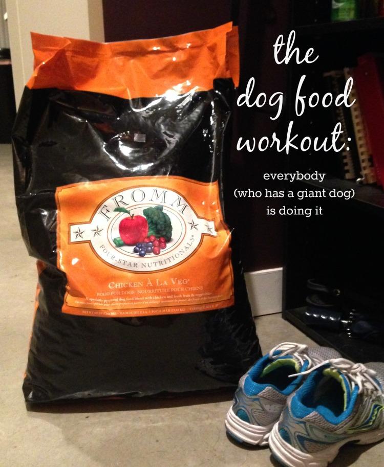 dog food workout simply social blog