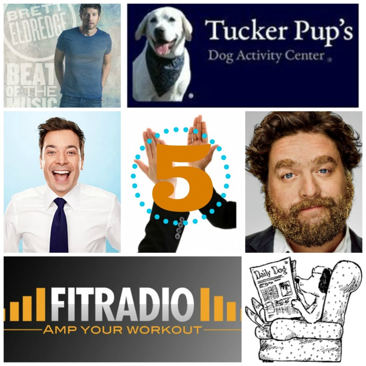 five people to high-five, tucker pups, zach galifianakis, jimmy fallon, brett eldredge, fitradio, barkpost