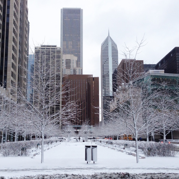 snow in march, chicago, pioneer plaza
