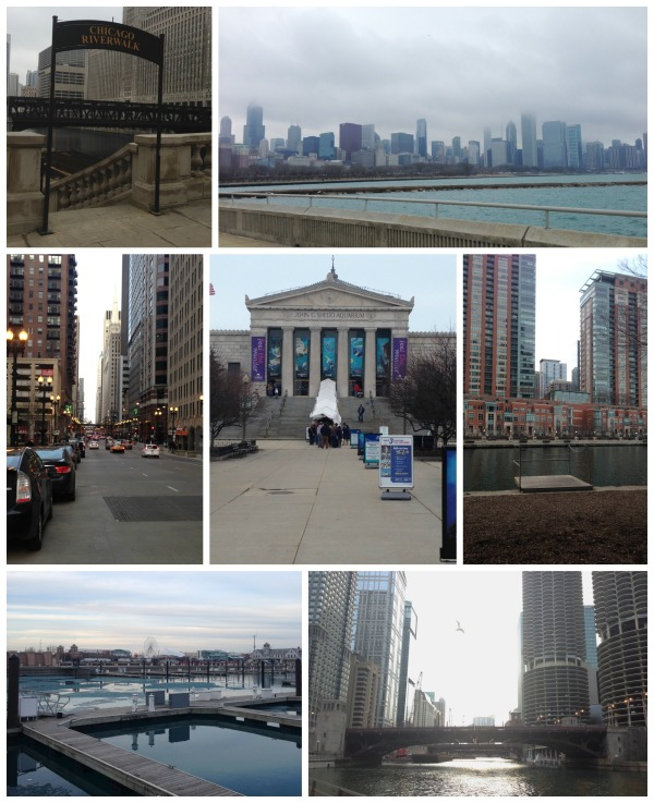 running in chicago, river path, lake michigan, shedd aquarium, navy pier