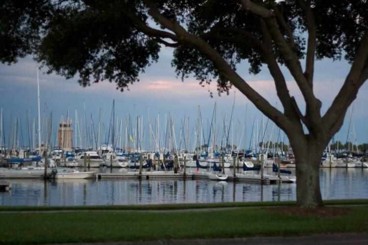 st. petersburg, florida, harbor, sailboats, ocean, tampa bay, sunset