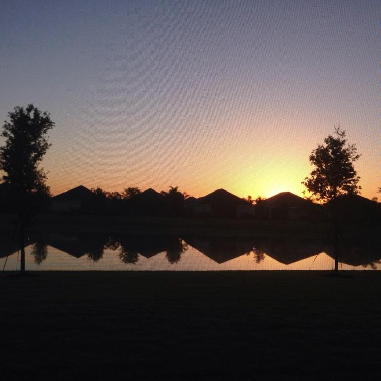 sunrise, lakewood ranch, florida, backyard,