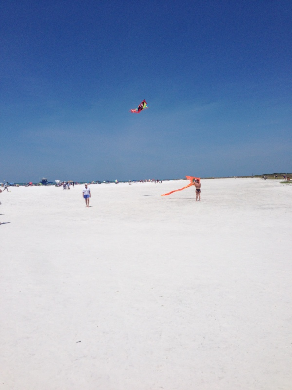 siesta key beach, siesta key, florida