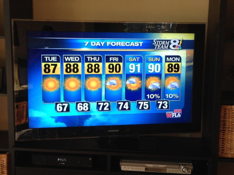 florida weather forecast, sarasota forecast, tampa bay weather