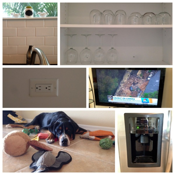 new house features, kitchen, subway tile, swiss mountain dog,