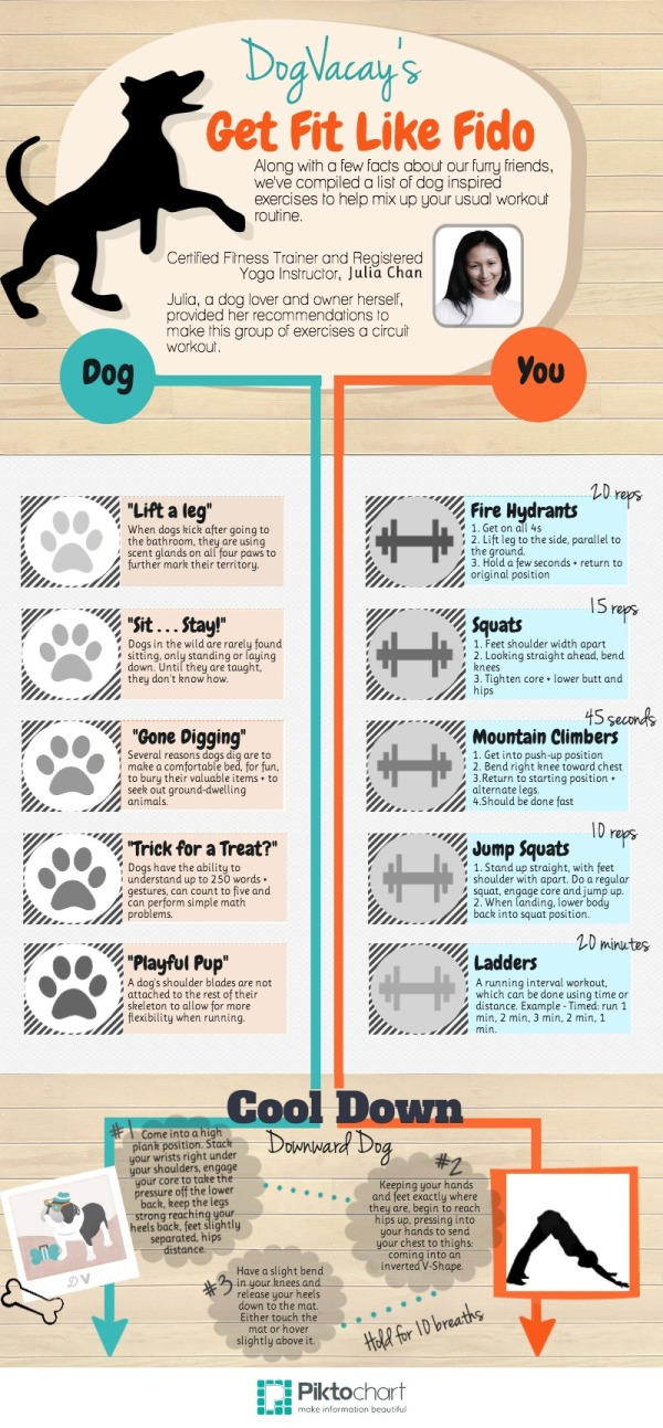 get fit like fido infographic, dogvacay.com, working out with your pet, workouts, fitness, exercises with your dog