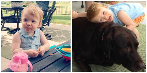 grace, puppy, bailey, chocolate lab, toddler, hugs