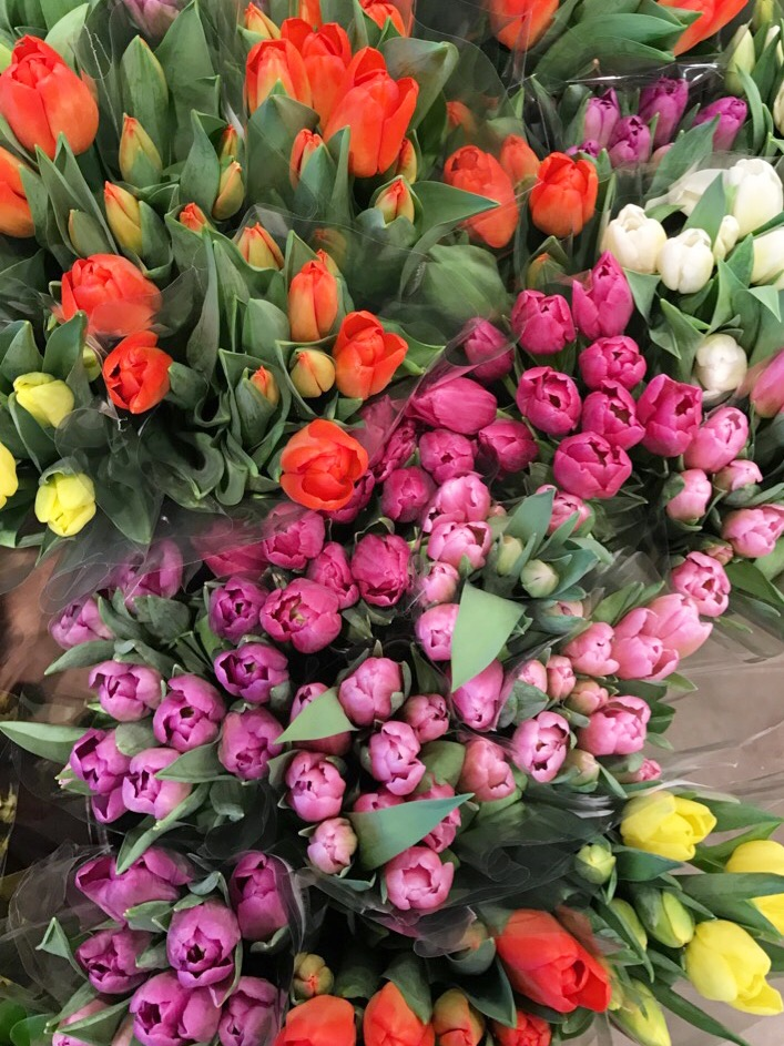 spring, tulips, whole foods, st. louis, flowers