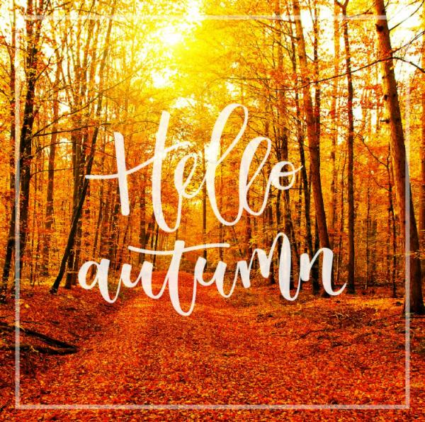 hello_autumn